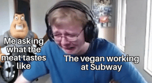 Subway, Vegan, and Chicken: Me asking  what the  meat tastes  like  The vegan working  at Subway Flatbread chicken ham cheese toasted tomatoes cucumber peppers lettuce mayo