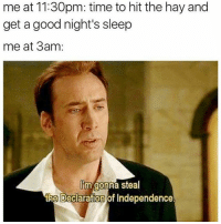 Memes, 🤖, and Cnc: me at 11:30pm: time to hit the hay and  get a good night's sleep  me at 3am  Um gonna Steal  the Declaration of Independence. CnC