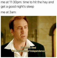 Memes, Declaration of Independence, and Good: me at 11:30pm: time to hit the hay and  get a good night's sleep  me at 3am:  Im gonna steal  the Declaration of Independence