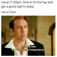 Memes, Declaration of Independence, and Good: me at 11:30pm: time to hit the hay and  get a good night's sleep  me at 3am  Im gonna steal  the Declaration of Independence.