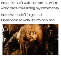 Money, Work, and Travel: me at 14: can't wait to travel the whole  world once i'm earning my own money  me now: mustn't forget that  tupperware at work, it's my only one