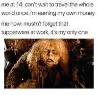Money, Reddit, and Work: me at 14: can't wait to travel the whole  world once i'm earning my own money  me now: mustn't forget that  tupperware at work, it's my only one