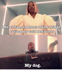 Dank Memes, Cold, and Dog: Me at 3am in front of the fridge,  eating my cold leftovers  My dog. @hoodpocahontas