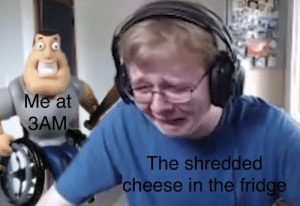 melonmemes:  Follow us on instagram for the best content!: https://www.instagram.com/realmelonmemes: Me at  3AM  The shredded  cheese in the fridge melonmemes:  Follow us on instagram for the best content!: https://www.instagram.com/realmelonmemes