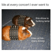 @bandmemes666: Me at every concert l ever went to  this show is  fucking lame  6o  Imao ya too  many posers @bandmemes666