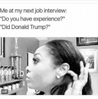 """Gif, Job Interview, and Memes: Me at my next job interview:  """"Do you have experience?""""  """"Did Donald Trump?""""  GIF 😂😂😂✔"""