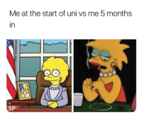 Memes, Best, and Trendy: Me at the start of uni vs me 5 months  in  SP Follow @studentproblems for the best memes on IG 😂