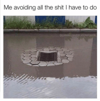 40 Funniest Pictures For Facebook That Are Absolutely Hilarious: Me avoiding all the shit I have to do  @gender.neutral sticker,pack 40 Funniest Pictures For Facebook That Are Absolutely Hilarious