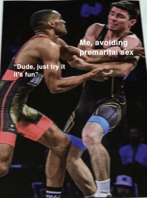 """Dude, Sex, and Irl: Me, avoiding  premarital sex  """"Dude, just try it  it's fun"""" Me_irl"""