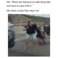 """Girl Memes, Alarming, and Bees: Me: """"Bees are dying at an alarming rate  we have to save them.""""  Me when a bee flies near  me me when I see anything that isnt human"""