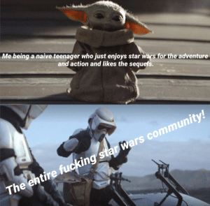 Seriously I'm tired of it. Ignore the fact this isn't from the prequels technically this is about this community so I thought it fit better here.: Me being a naive teenager who just enjoys star wars for the adventure  and action and likes the sequels.  The entire fucking star wars community! Seriously I'm tired of it. Ignore the fact this isn't from the prequels technically this is about this community so I thought it fit better here.