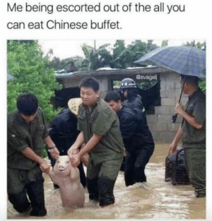 Club, Tumblr, and Blog: Me being escorted out of the all you  can eat Chinese buffet.  @svagel laughoutloud-club:  Ima leave this world Smilling