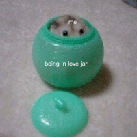 Love, Deep, and In Love: me  being in love jar <p>in too deep</p>