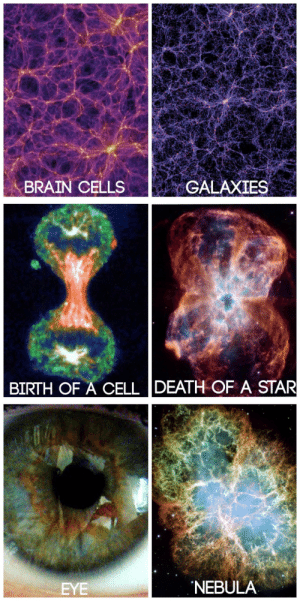"""Target, Tumblr, and Blog: ME  BRAIN CELLSGALAXIES   BIRTH OF A CELL DEATH OF A STAR   EYE  NEBULA snime:  tobeagenius:  """"You are the universe, expressing itself as a human for a little while"""""""