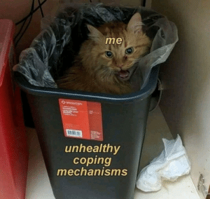 Trash cat: me  BRIGHTON  wastaask  orbein ou  unhealthy  coping  mechanisms Trash cat