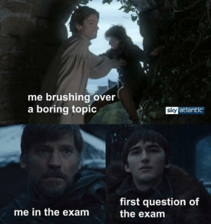 meirl: me brushing over  a boring topic  sky atlantic  first question of  the exam  me in the exam meirl
