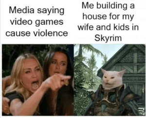 Dank, Memes, and Skyrim: Me building a  house for my  Media saying  video games  wife and kids in  cause violence  Skyrim This is NOT mine. Found it on FB and had to share. by MattressViking MORE MEMES