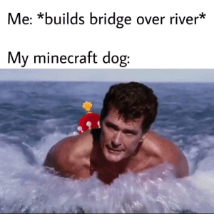 Minecraft memes that aren't minecraft but actually are: Me: *builds bridge over river*  My minecraft dog: Minecraft memes that aren't minecraft but actually are