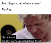 Food, Fucking, and Shoes: Me: *Buys a pair of new shoes*  My dog:  delicious  Finally, some good fucking food every time