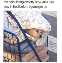 Too cosy 😔 Follow @confessionsofablonde @confessionsofablonde @confessionsofablonde @confessionsofablonde: Me calculating exactly how late I can  stay in bed before I gotta get up Too cosy 😔 Follow @confessionsofablonde @confessionsofablonde @confessionsofablonde @confessionsofablonde