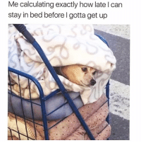 If I go back to sleep now I can get 17 more seconds🤪😴 via my fave @thespeckyblonde @thespeckyblonde @thespeckyblonde: Me calculating exactly how late l can  stay in bed before l gotta get up If I go back to sleep now I can get 17 more seconds🤪😴 via my fave @thespeckyblonde @thespeckyblonde @thespeckyblonde