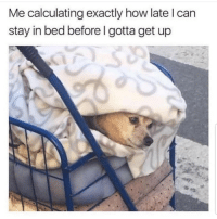 Lmaoo 😐😐😂😂 🔥 Follow Us 👉 @latinoswithattitude 🔥 latinosbelike latinasbelike latinoproblems mexicansbelike mexican mexicanproblems hispanicsbelike hispanic hispanicproblems latina latinas latino latinos hispanicsbelike: Me calculating exactly how late l can  stay in bed before I gotta get up Lmaoo 😐😐😂😂 🔥 Follow Us 👉 @latinoswithattitude 🔥 latinosbelike latinasbelike latinoproblems mexicansbelike mexican mexicanproblems hispanicsbelike hispanic hispanicproblems latina latinas latino latinos hispanicsbelike