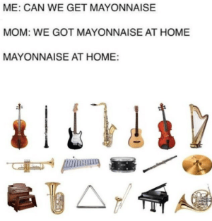 Home, Mom, and Got: ME: CAN WE GET MAYONNAISE  MOM: WE GOT MAYONNAISE AT HOME  MAYONNAISE AT HOME: