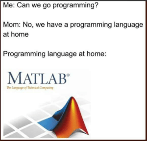 MATLAB is lowkey really good, tho: Me: Can we go programming?  Mom: No, we have a programming language  at home  Programming language at home:  MATLAB  The Language of Technical Computing MATLAB is lowkey really good, tho