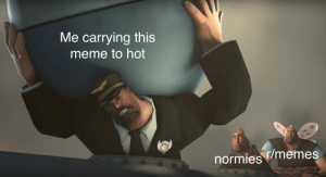 Meme, Memes, and Reddit: Me carrying this  meme to hot  normies memes tf2 is still relevent