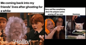 18 Very Dumb Harry Potter Memes For The Sirius-ly Obsessed: Me coming back into my  friends' lives after ghosting for  a while:  Harry and Ron complaining  about the polyjuice potion  wearing off too soon  the.maraudersmemes  Hermione  Hello! 18 Very Dumb Harry Potter Memes For The Sirius-ly Obsessed