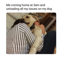 Home, Girl Memes, and Coming Home: Me coming home at 3am and  unloading all my issues on my dog