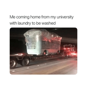 Laundry, Home, and Coming Home: Me coming home from my university  with laundry to be washed Accurate 😂