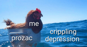 Why did the chicken cross the ocean?: me  crippling  prozac depression Why did the chicken cross the ocean?