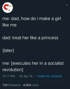 Ah crap here we go again: me: dad, how do i make a girl  like me  dad: treat her like a princess  {later}  me: [executes her in a socialist  revolution]  06 Apr 19Twitter for And roid  733 Retweets 4,304 Likes Ah crap here we go again