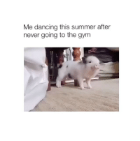 Dancing, Gym, and Summer: Me dancing this summer after  never going to the gym oink oink 🐽