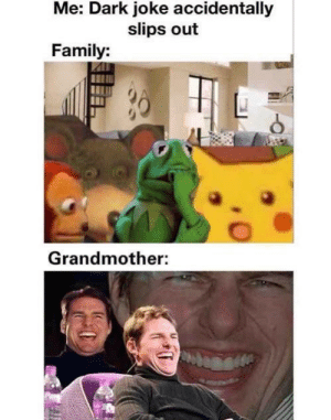 Dank, Family, and Memes: Me: Dark joke accidentally  slips out  Family:  Grandmother: Dear, did you hear what he just said!? by poquack MORE MEMES