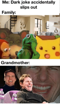 Family, Memes, and Good: Me: Dark joke accidentally  slips out  Family:  Grandmother: Granny is a good sport via /r/memes http://bit.ly/2S1db2P