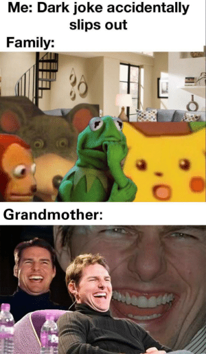 Dank, Family, and Memes: Me: Dark joke accidentally  slips out  Family:  Grandmother: Granny is a good sport by Al-13 MORE MEMES
