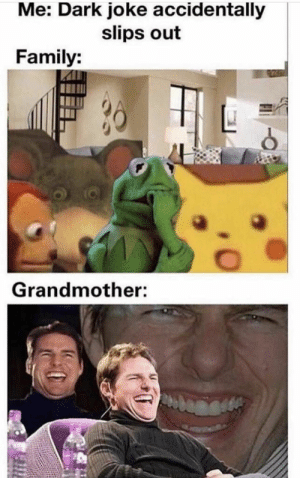 Family, Dark, and Com: Me: Dark joke accidentally  slips out  Family:  Grandmother: The Daily Scramble | Vol. 1029 (30 Pics) | getsokt.com