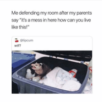 "Parents, Wtf, and Yee: Me defending my room after my parents  say ""it's a mess in here how can you live  like this!""  О @lipcum  wtf? yee"