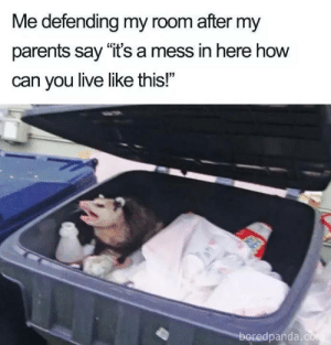 "Memes, Parents, and Live: Me defending my room after my  parents say ""it's a mess in here how  can you live like this!""  boredpanda Memes regarding your messy place"