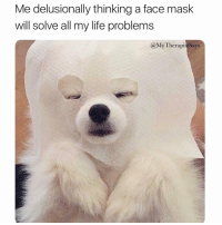 Life, Text, and Girl Memes: Me delusionally thinking a face mask  will solve all my life problems  @My Therapis Says Hyaluronic acid totally will make him text me back? Right? Right.