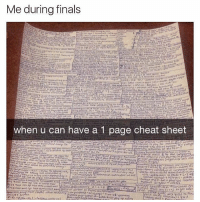 Finals, Lmao, and Black Twitter: Me durina finals  rP  when u can have a 1 page cheat sheet  const always lmao