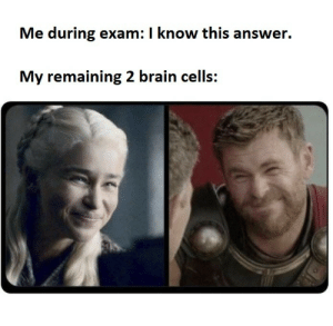 Dank, Memes, and Target: Me during exam: I know this answer.  My remaining 2 brain cells: *visible confusion* by tryndye MORE MEMES