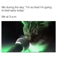 """Caturday in full effect revolution goingtobedearly CatVidVia @taylormeno: Me during the day: """"I'm so tired l'm going  to bed early today""""  Me at 3 a.m: Caturday in full effect revolution goingtobedearly CatVidVia @taylormeno"""