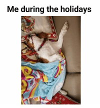 Memes, 🤖, and Wake: Me during the holidays Wake me up when the year is over