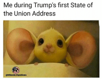 Memes, Patriotic, and State of the Union Address: Me during Trump's first State of  the Union Address  MR  @Millennial Republicans Me tonight 🇺🇸 stateoftheunion . . . . . 🇺🇸ALL WATERMARKED MEMES ARE WRITTEN BY MILLENNIAL REPUBLICANS BUT WE DO NOT OWN THE PHOTOS WITHIN THE MEMES🇺🇸 MAGA millennialrepublicans donaldtrump buildthewall mypresident trump2020 merica fakenews republican rightwing draintheswamp conservative makeamericagreatagain trump liberallogic americafirst trumptrain bluelivesmatter backtheblue triggered trumpmemes presidenttrump snowflakes PARTNERS🇺🇸 @conservative_comedy_ @always.right @raging_patriots @conservative.american @right.wing.patriots @theright.americans