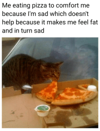 pizza: Me eating pizza to comfort me  because I'm sad which doesn't  help because it makes me feel fat  and in turn sad