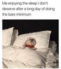 23 Lighthearted Memes That'll Improve Your Mood: Me enjoying the sleep I don't  deserve after a long day of doing  the bare minimum 23 Lighthearted Memes That'll Improve Your Mood