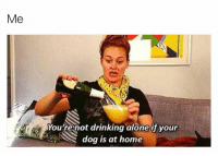 Drinking Alone: Me  enot drinking alone if your  dog is at home  You r